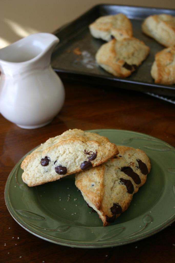 Dark Chocolate Chip Cream Scones