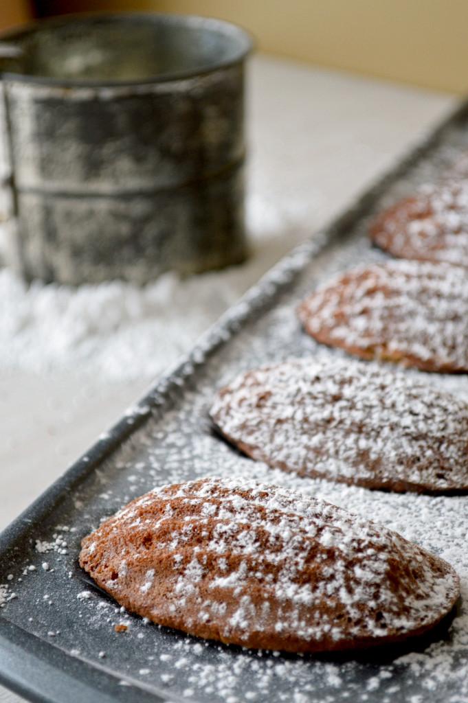 Vanilla Bean Madeleines - Kitchen Gidget