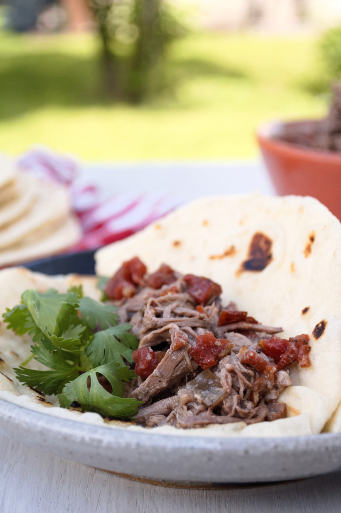 Machaca: TexMex Shredded Beef | Kitchen Gidget