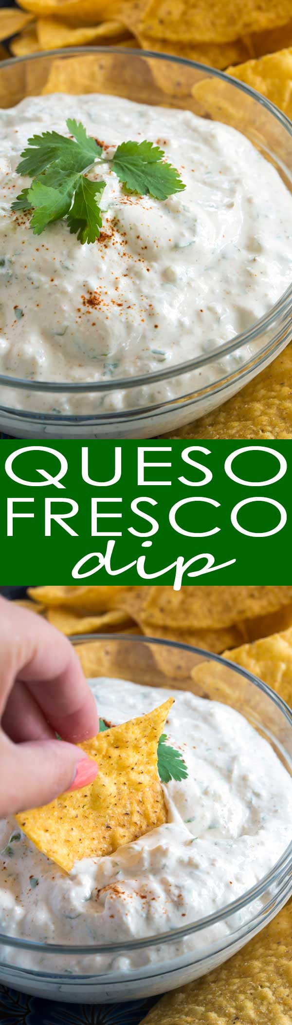 Queso Fresco Dip: creamy sour cream, fresh cilantro, crumbled white queso fresco and a few Mexican spices are all you need to make this easy dip!