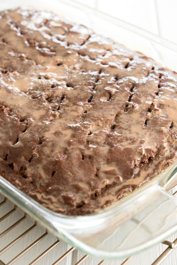 Chocolate tres leches cake after being soaked with milk