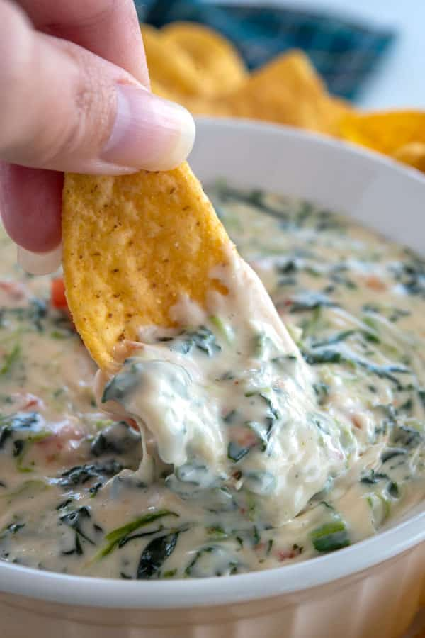 Tortilla chip being dunked into spinach cheese dip
